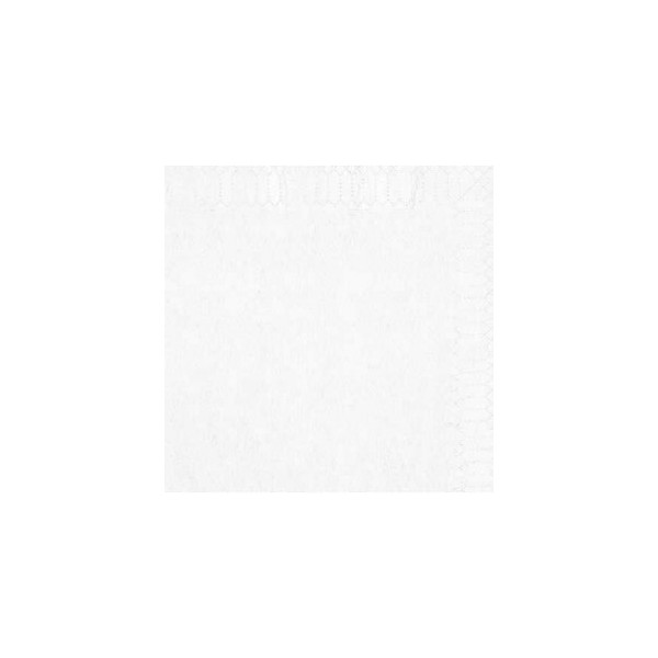 zoom Serviette 30 x 30 blanche 2 Plis