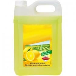 Détergeant Citron